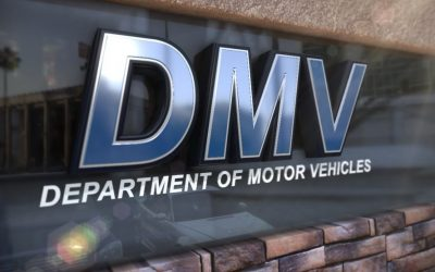 We Want More Government, Regulations + Socialism; We Want more DMV's