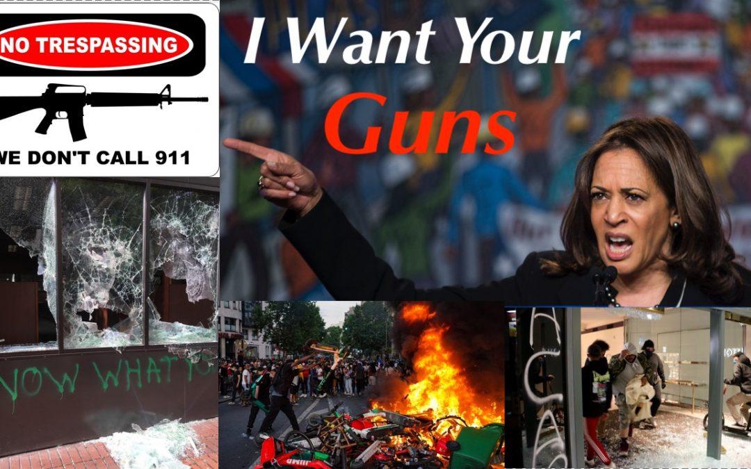 Kamala Harris will COST Joe Biden Votes, not Bring them in-  New Gun Owners Explain Why